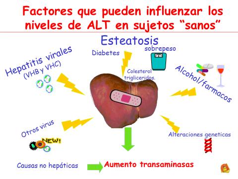 transaminasas hepaticas elevadas sintomas