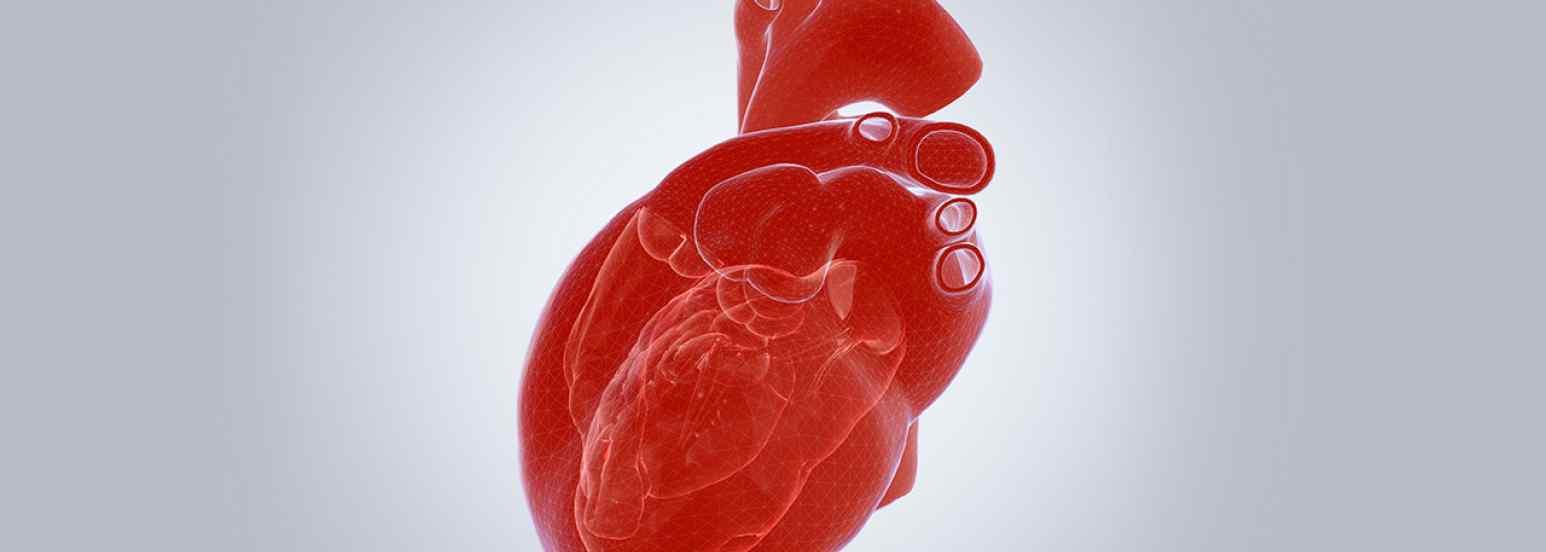 Cirugía bariátrica e insuficiencia cardiaca
